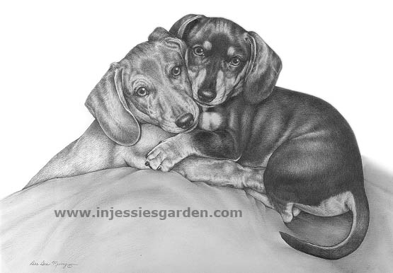 Smooth Dachshunds Art